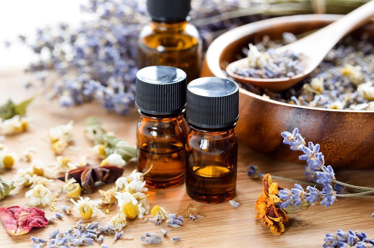 Osmologia – A Ciência dos odores será tema de um dos Simpósios do XX Congresso